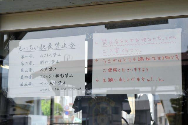 【山形鉄道】🐰ウサギ駅長、謎の野草で病院行きに…「エサあげないで」の禁止令 ->画像>34枚